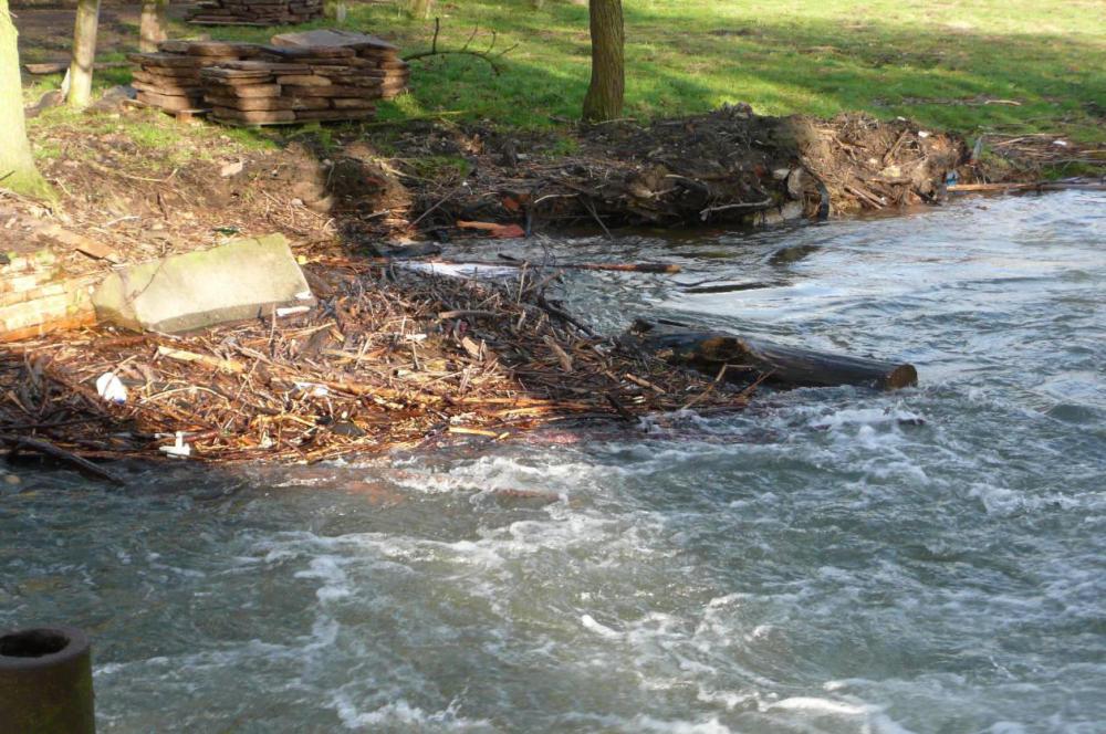 Solche Bäume können auf Grund ihrer Masse und der hohen Geschwindigkeit des Wassers schwere Schäden am Wasserbau anrichten.