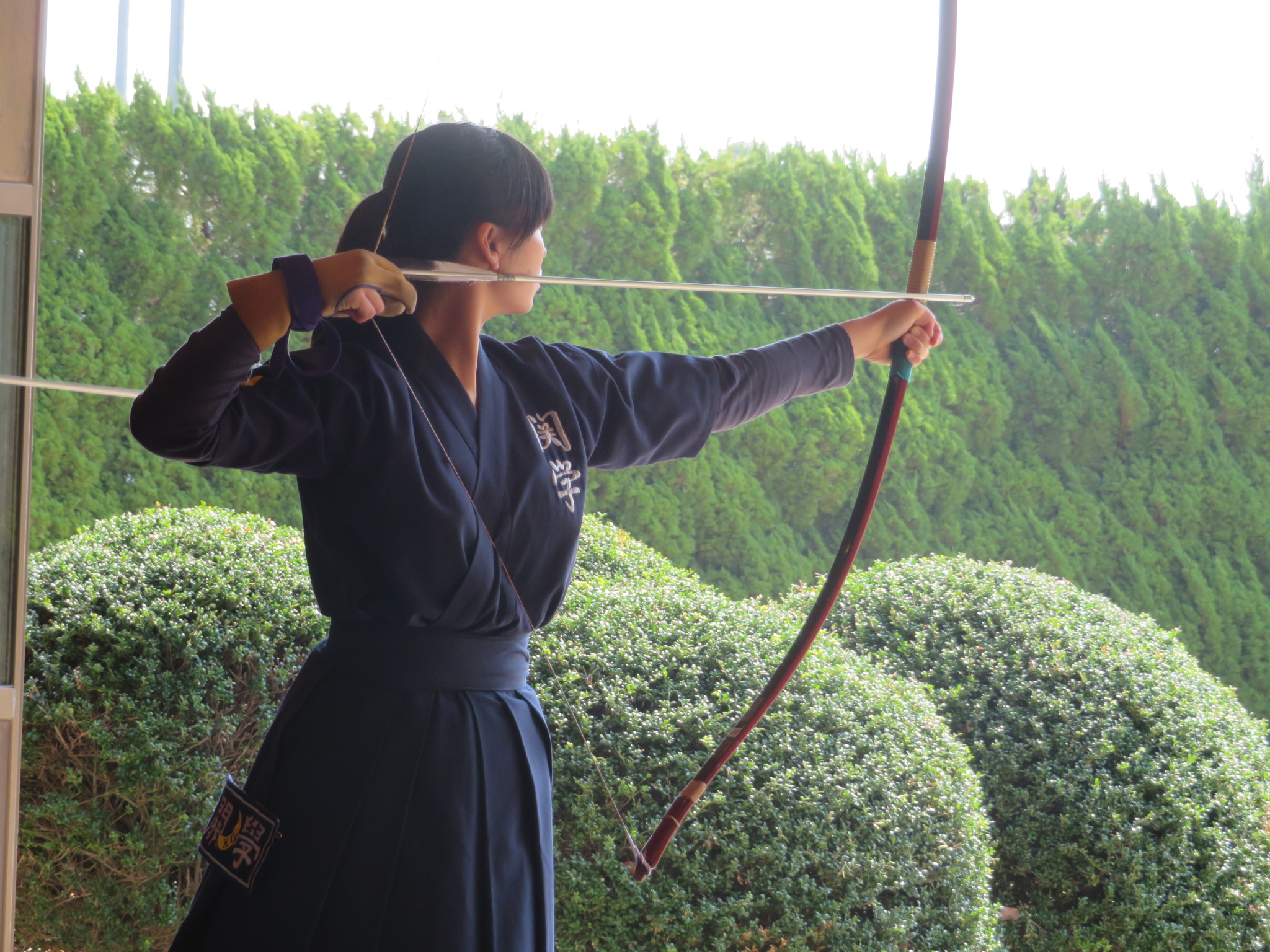 同志社戦 落前 沼野(新1) 大学から弓道を始めました