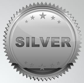 VAM2 Silver Support