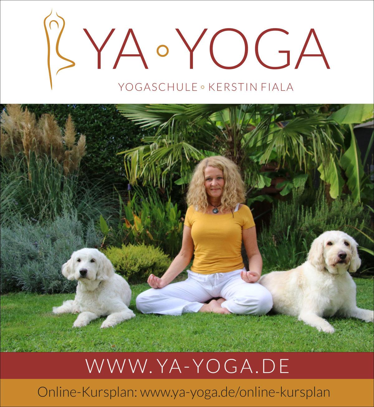 Online-Yoga-Kursplan