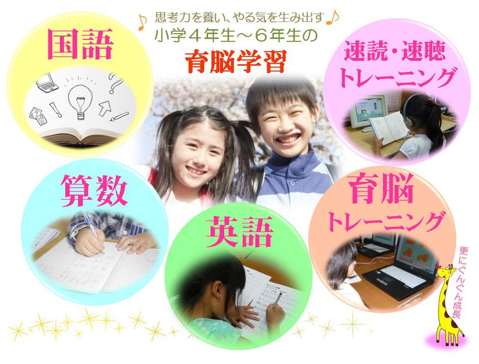 育脳学習 国語 算数 英語 育脳トレーニング 速読・速聴トレーニング