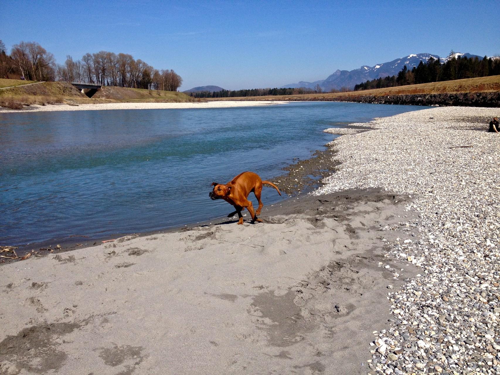 So viel Spass am Wasser und im Sand!
