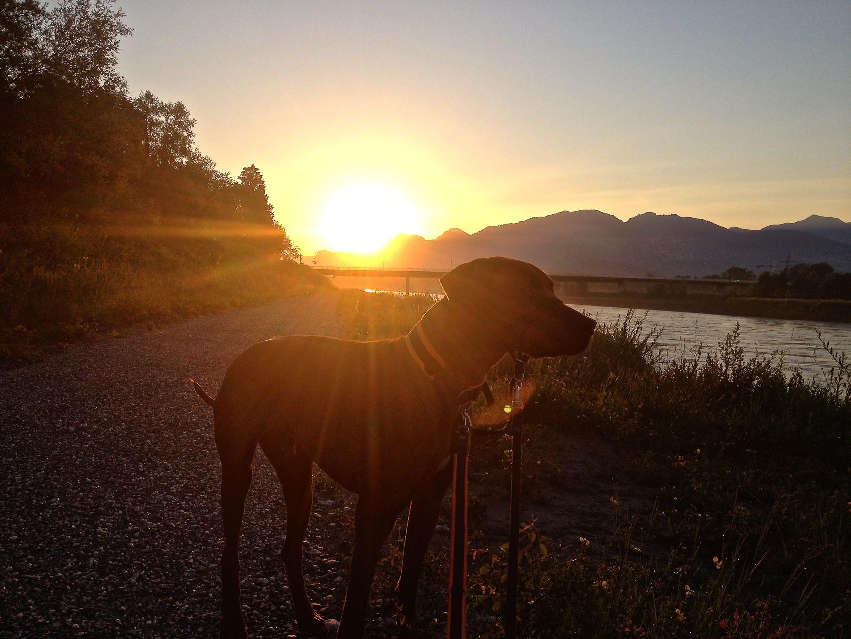 Sonnenaufgang am Grenzübergang Österreich-Schweiz