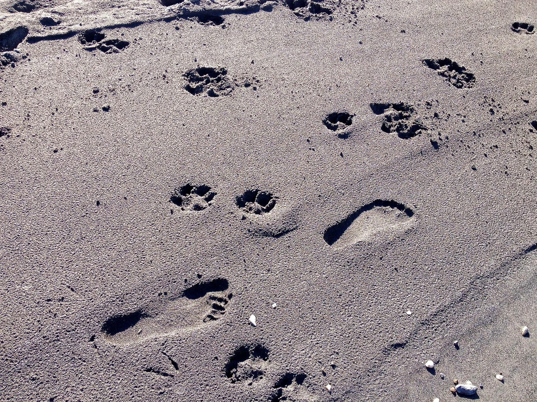 """Spuren im Sand von """"Mami"""" und mir!"""