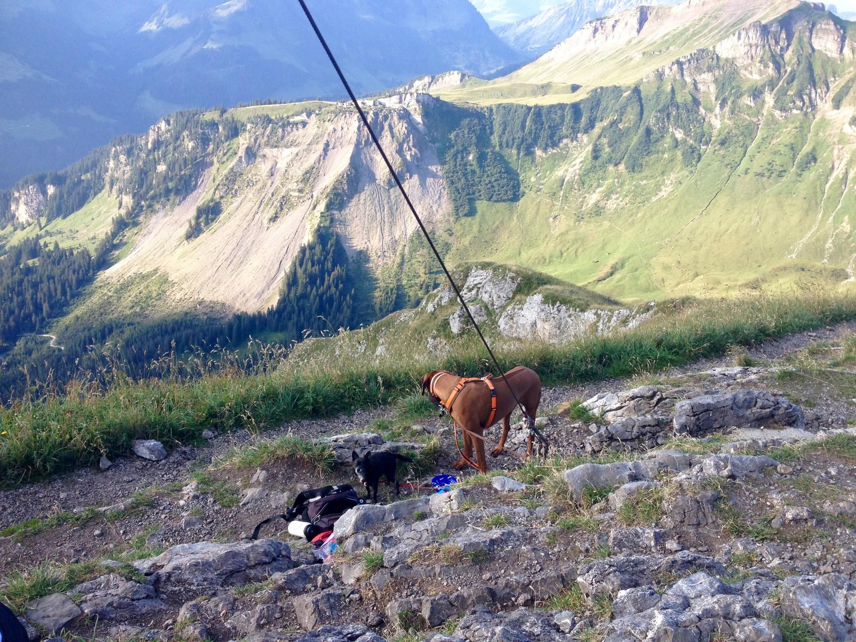 Mein bislang höchster Berg: Kanisfluh im Bregenzerwald 2044m