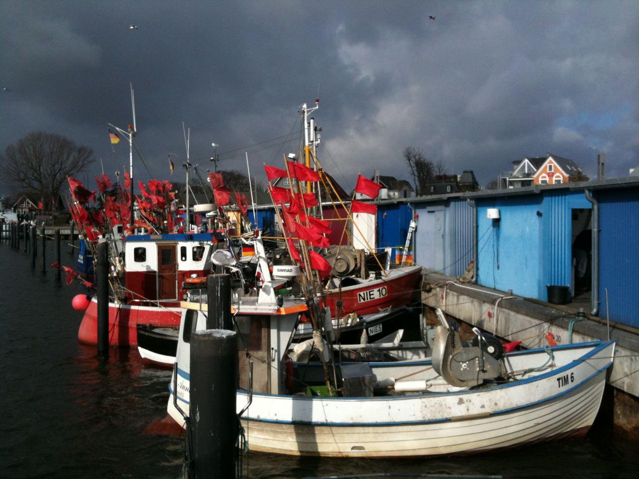 Fischbrötchen im Hafen von Niendorf essen,