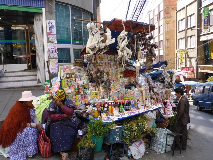 Hexenmarkt mit Lamaembryos und vielen Kräutern