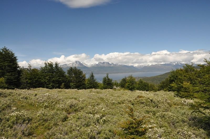 Ausblick im NP Tierra del Fuego