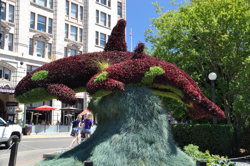 Ein schönes Orca-Denkmal in Victoria