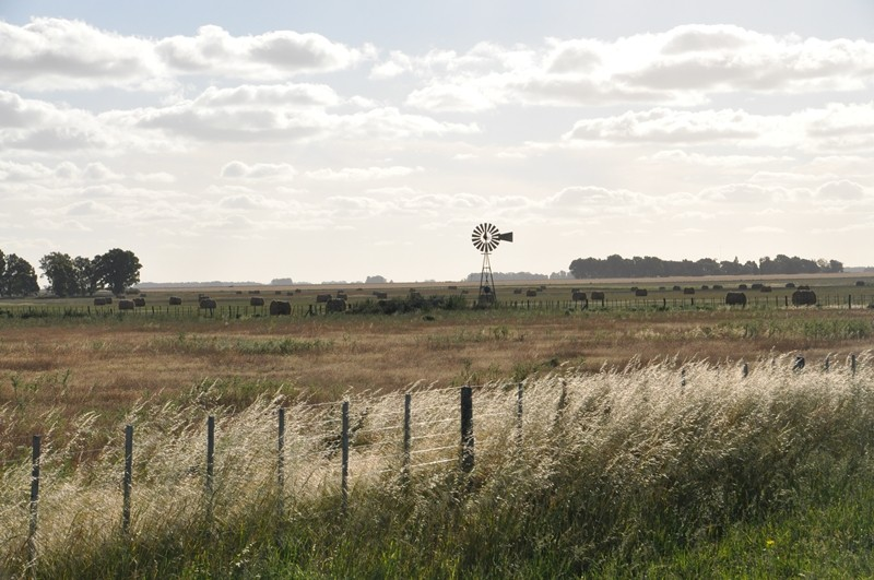 Windrad in der Pampas