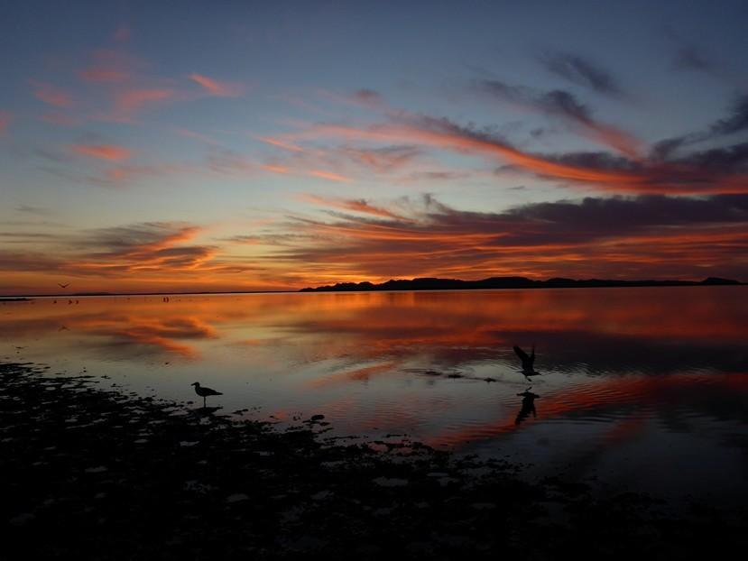 Sonnenaufgang direkt am Meer