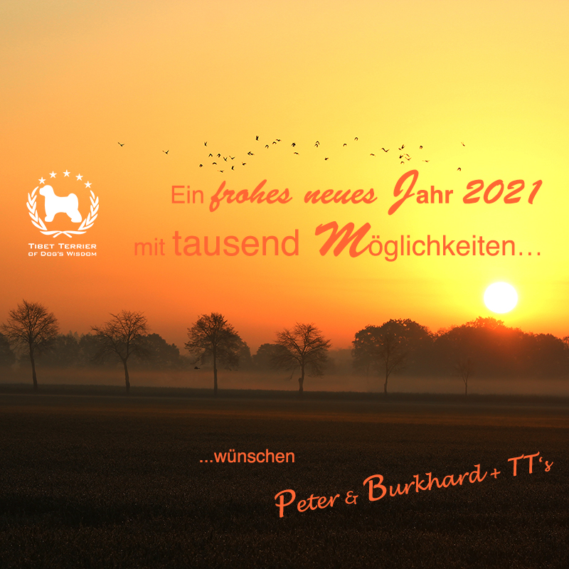 Frohes neues Jahr / Happy new Year 2021