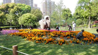 花がきれいだった。 朝おじさんたちが一生懸命やってた。 华山绿地