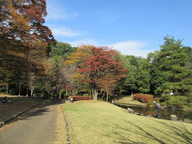 一本杉公園(昼食)の紅葉