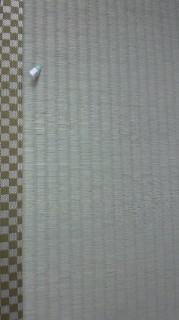 ★特上の畳おもて★