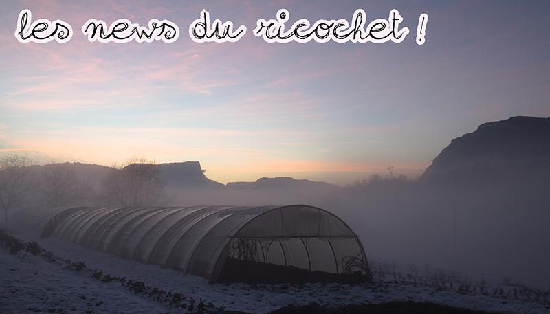 Newsletter #9 : janvier 2015