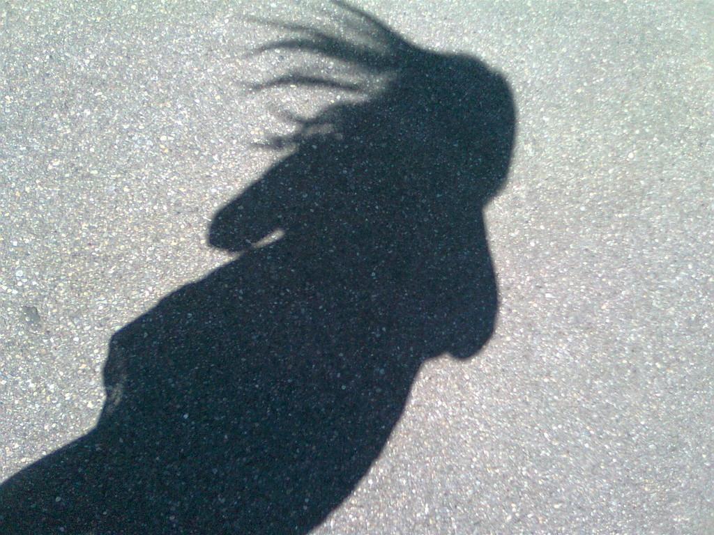 Der Schatten?