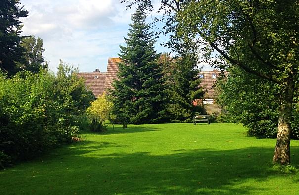 Riesengroße Rasenfläche