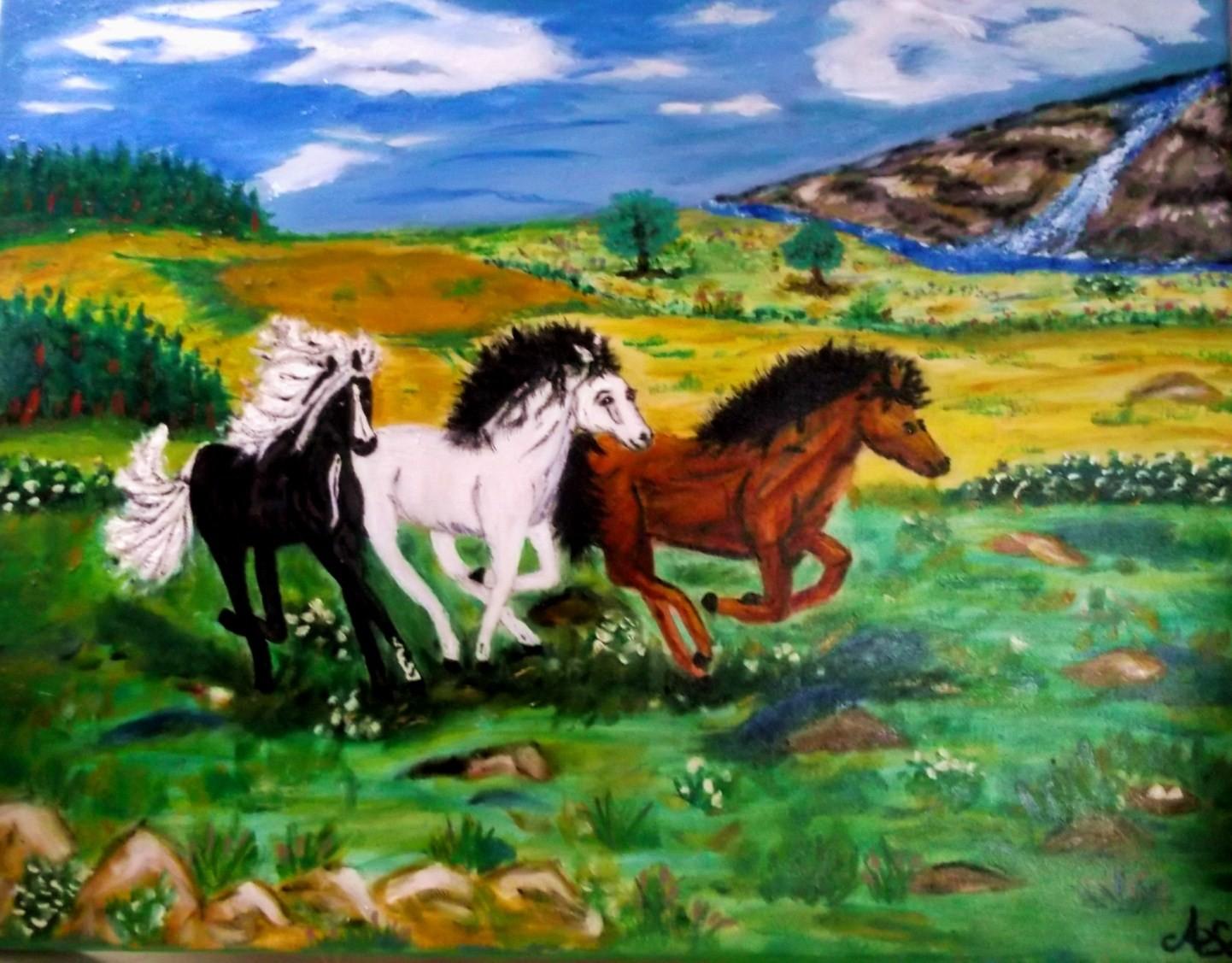 Pferde im Galopp 50 x 70 cm