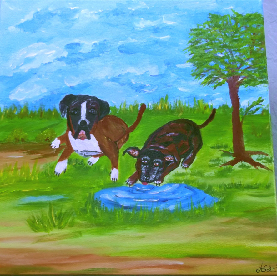 Zwei Hunde die schon im Himmel sind 50 x 50 Leinwand