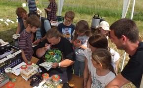 Eva-Maria Kalok beim Bestimmen gefundener Tiere und Pflanzen