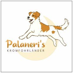 Logo von Palaneri's Kromfohrländer