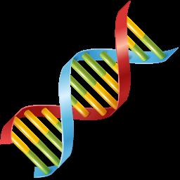 Icon DNA-Strang