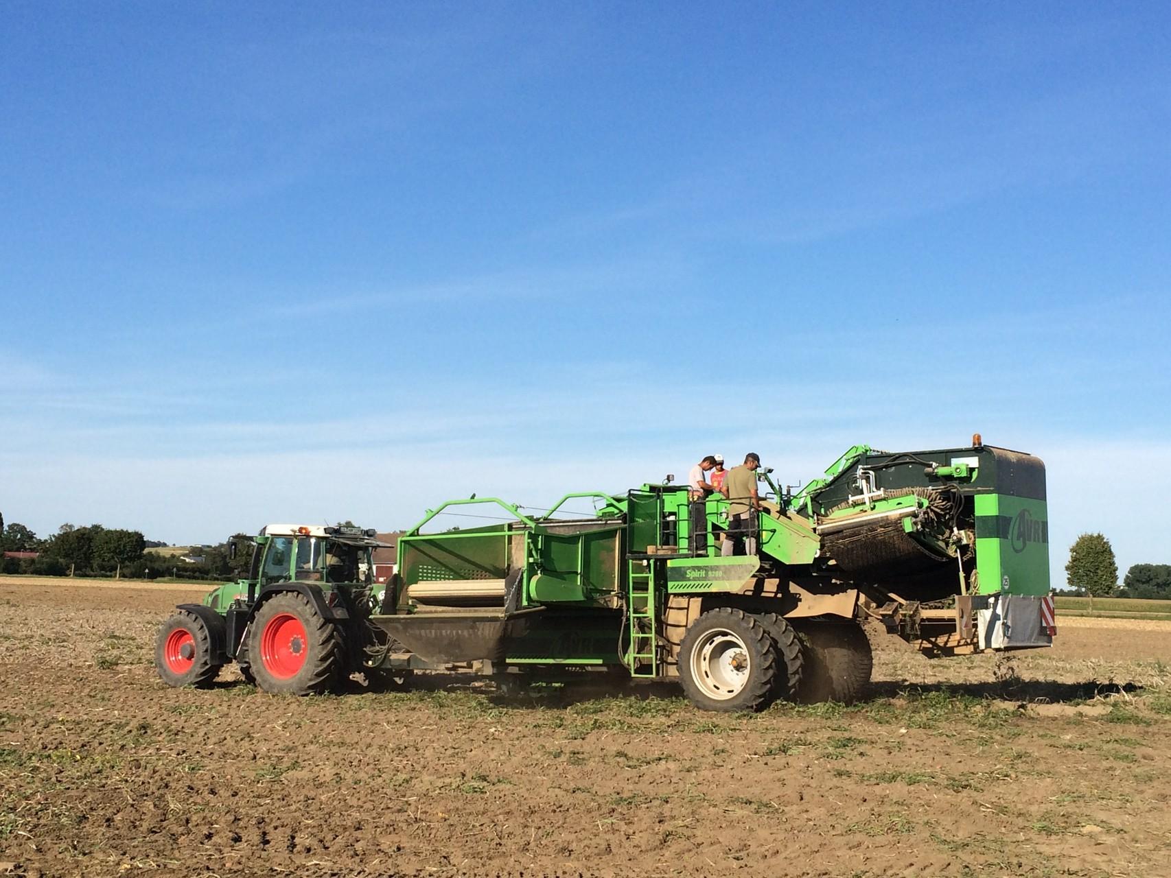 Die Kartoffelernte 2015 unter enormer Trockenheit