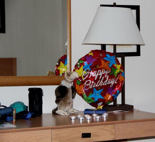 Happy Birthday Dieter! Man beachte Wally.....