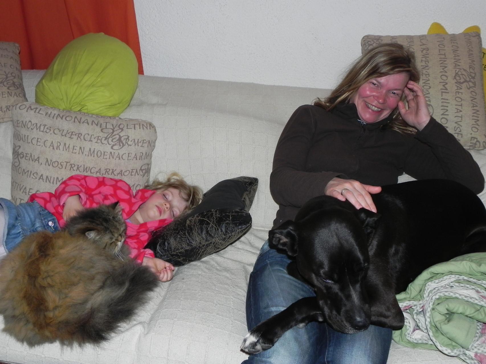 hier kann man sogar mit den Tieren einschlafen