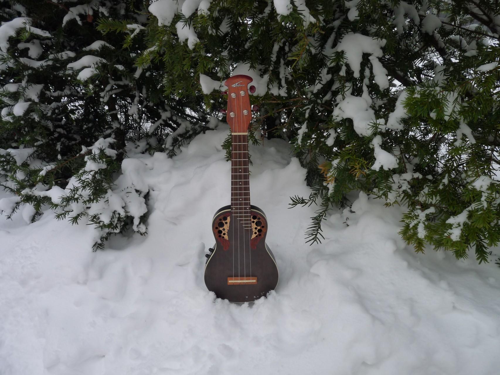 Ukulele im Schnee