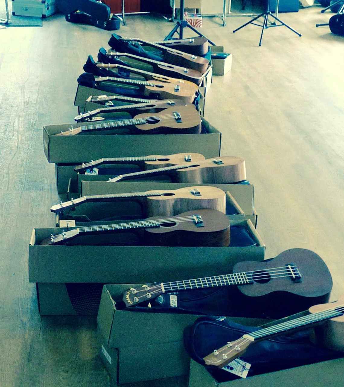 Ukulelenworkshop in Worpswede