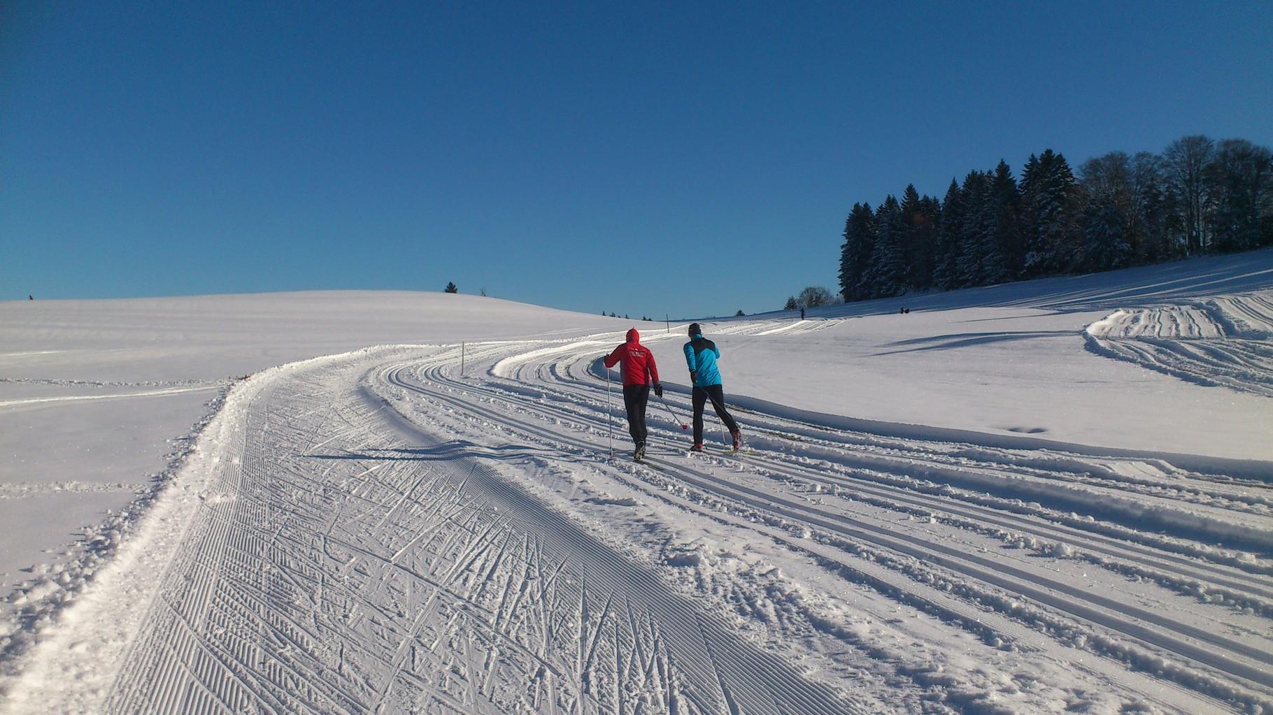 Langlaufloipen in Scheidegg