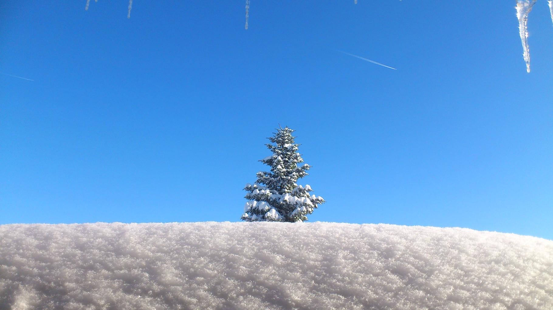 ... noch Platz für Schnee