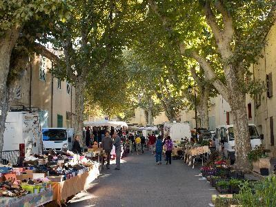 Ramonage à Saint Cannat et Aix en Provence