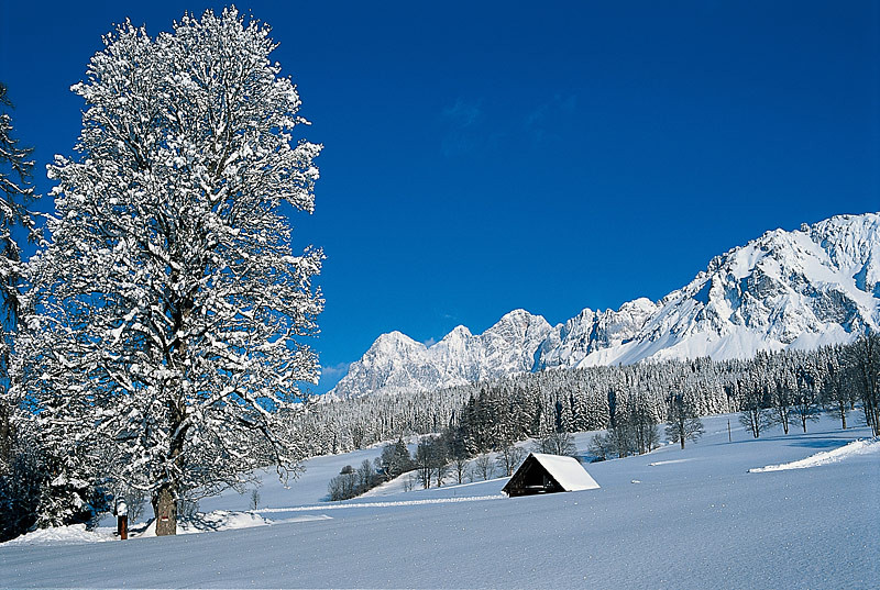 Winteridylle in Ramsau am Dachstein