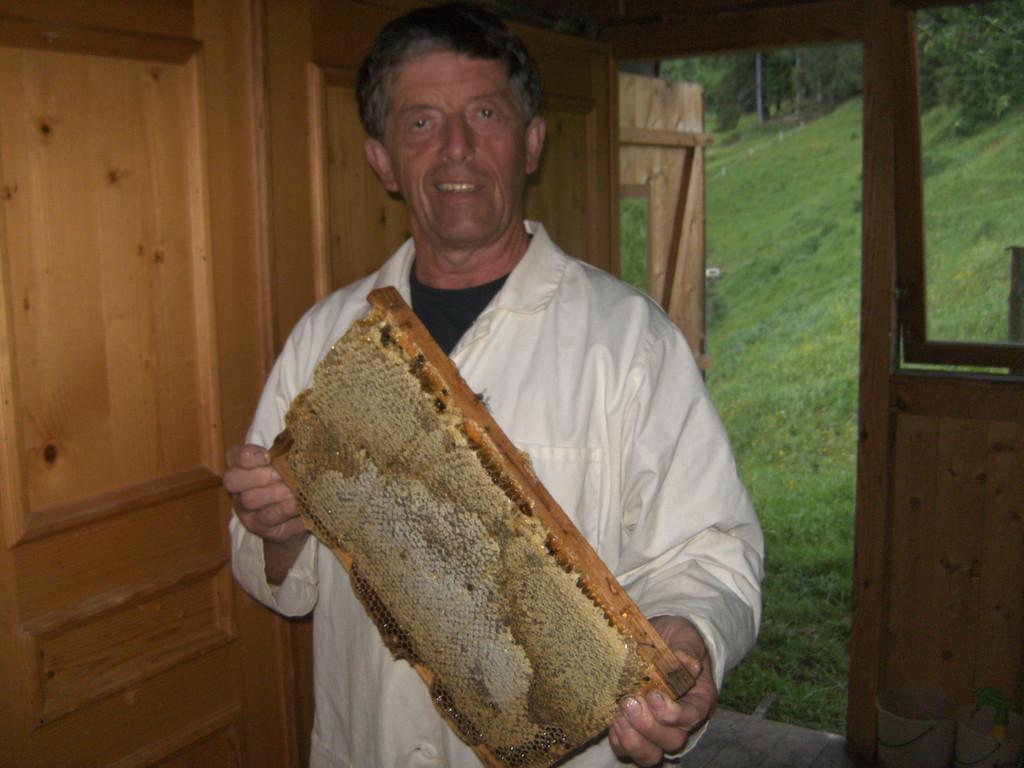 eine ganz volle Honigwabe - es ist wieder ein gutes Jahr