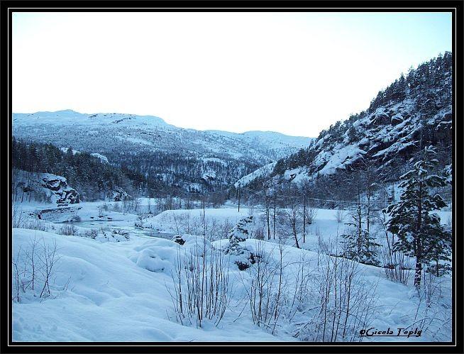 in eine Winterlandschaft..