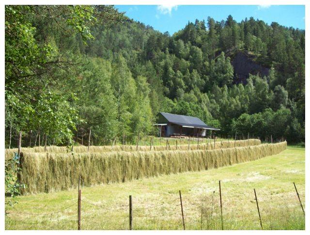 ein Sommertag in Brekke...