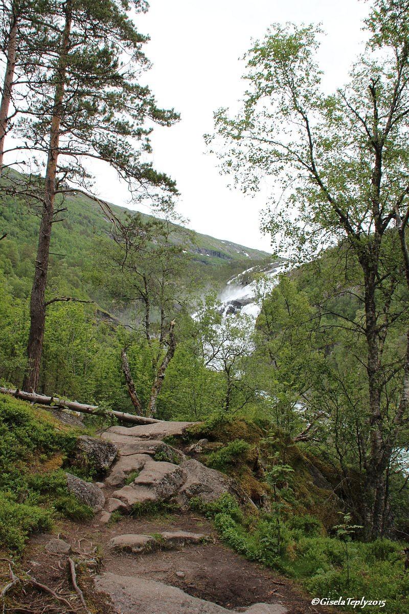 Weg zum 2. Wasserfall dem Nyastølfossen auf ca. 400 m.ü.MN