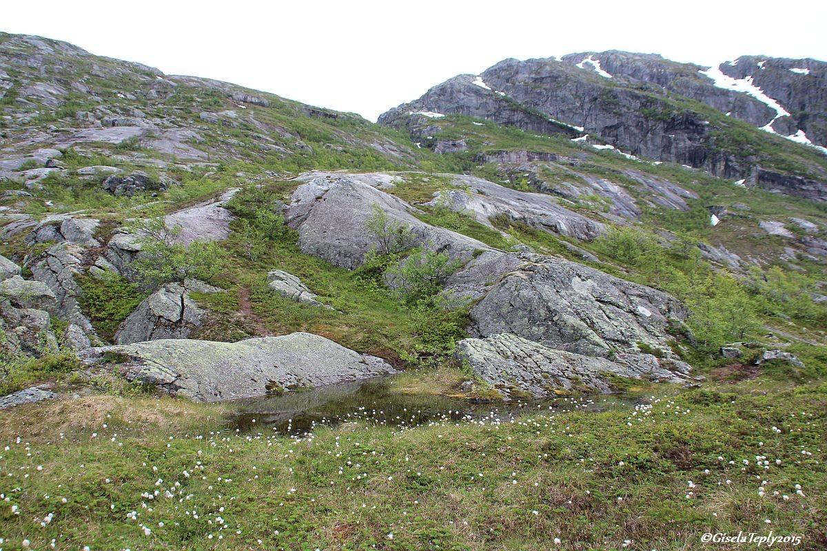 Dort entlang verläuft der Weg hoch nach Stavali und der Hardangervidda