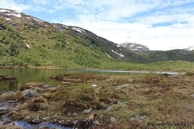 und der See dazu...hier gibt es leckere Bachforellen..