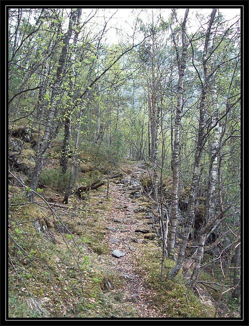 dieser Weg fuer Richtung Middagsnuten und Mosdalen