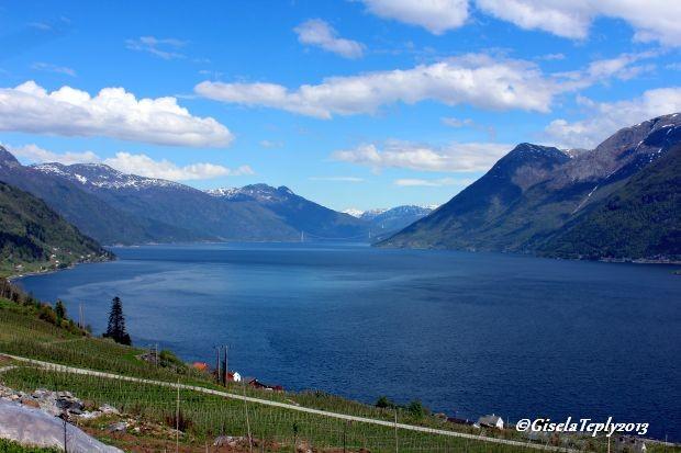 Blick auf den Fjord...