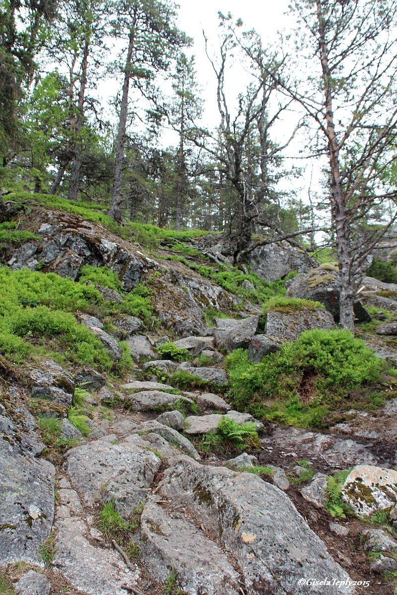 Weg Richtung 4. Wasserfall