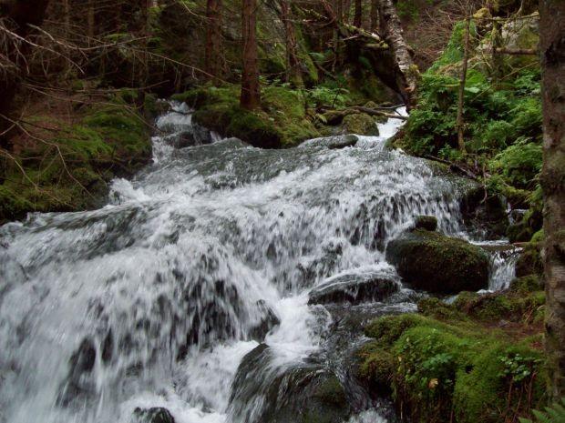 und überall findet man Bäche und Wasserfälle ob klein oder gross..