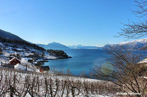 Blick auf den winterlichen Hardangerfjord in Hesthamar