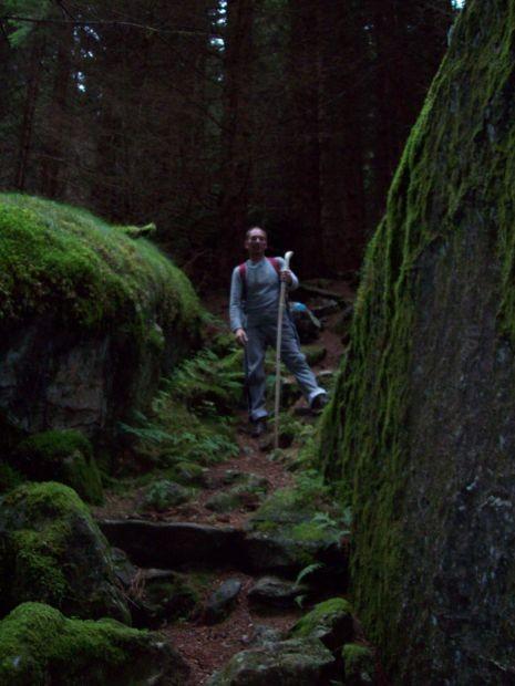 Bergwald und Felsen säumen unseren Weg...