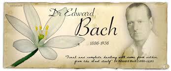 Dr. Edward Bach - Bachblüten - Beratung - Isabella Lechleitner Amlikon-Bissegg