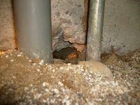 床下にあるネズミの侵入口(鼠穴)